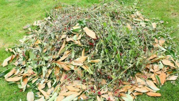 Zelený odpad